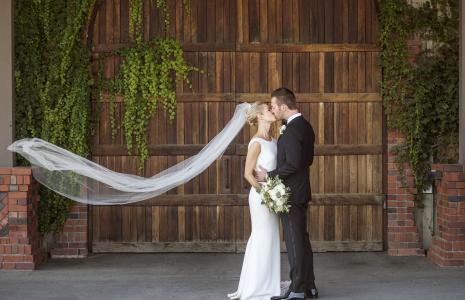Leal Barrel Room Veil