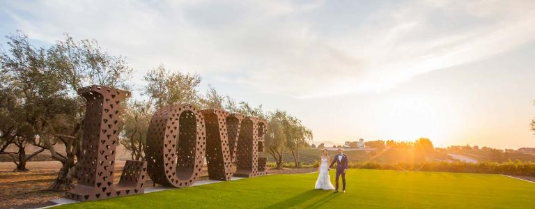 California Vineyard Wedding Destination