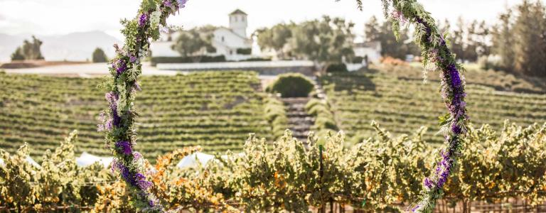 Hollister CA Vineyard Wedding