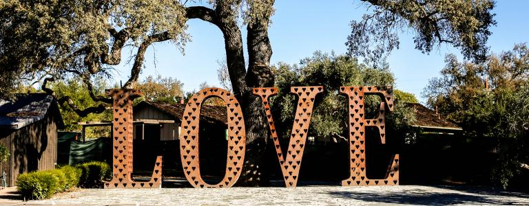 Tree with love sign